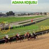 03.10 Pazartesi ADANA (Özgür Şölen) – 1'i Favori 1'i Cazip Toplam 2 Banko