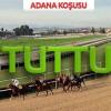 05 Kasım Pazartesi ADANA(1.Altılı Tuttu 1.300 lira 2.Altılı 52 bin lira )