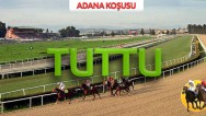 04 Nisan Pazar ADANA  (226 X 100 = 22 Bin 600 lira)