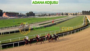 14 Mart Cumartesi ADANA(9 bin 745 lira)