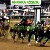 26 Mayıs Cumartesi ANKARA Yarışı – Cazip Banko