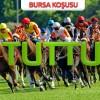 08 Ocak Pazartesi BURSA Yarışı