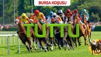 06 Ağustos Pazartesi BURSA (1.544 lira)