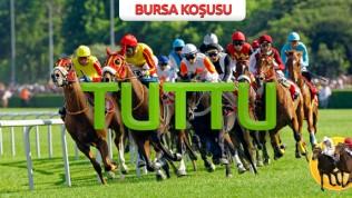 22 Şubat Pazartesi BURSA (1.500 lira )