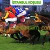 25 Mayıs Cuma İSTANBUL Yarışı