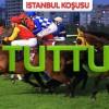 19 Ağustos Pazar İSTANBUL (1.Altılı tuttu 2.450)