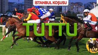 14 Haziran Pazar İSTANBUL(1.890 lira)